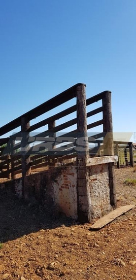 Fazenda Rural À Venda, Fazenda Nova, Fazenda Nova. - Fa0055