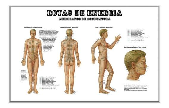 Poster Pontos E Meridianos Hd 65x100cm Decoração Acupuntura