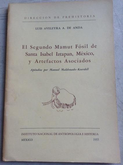 El Segundo Mamut Fósil De Santa Isabel Iztapan, México