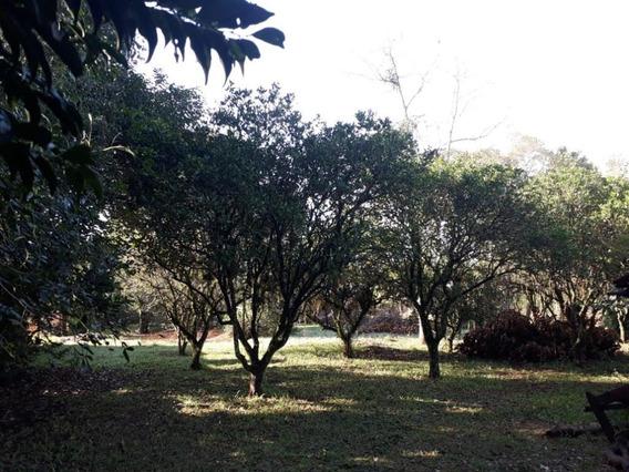 Área À Venda, 3240 M² - Neópolis - Gravataí/rs - Ar0015