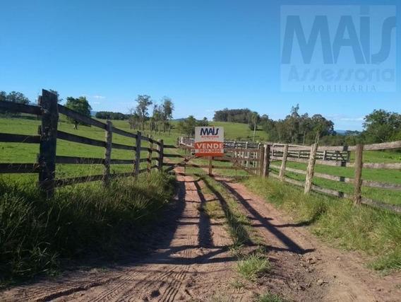 Fazenda Para Venda Em Taquara, Entrepelado - Cvf001