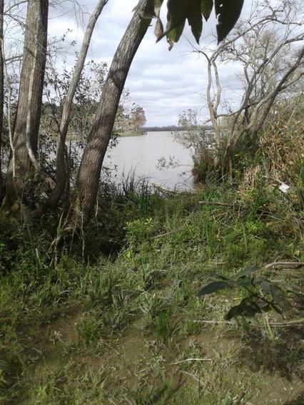 Lotes En Delta Parana Arroyo Paycarabi