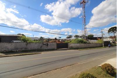Terreno Comercial Para Locação, São Braz, Curitiba. - Te0025