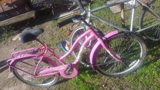 Bicicleta Rodado 24 De Mujer