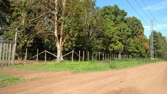 Terreno Em Fazendinha, Macapá/ap De 0m² À Venda Por R$ 300.000,00 - Te452748