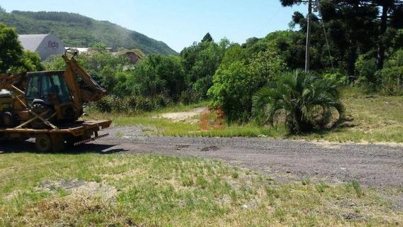 Sítio Com 16 Hectares Em Caçapava Do Sul / Rs - Si0003