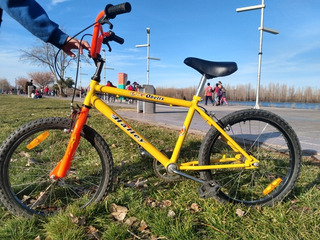 Bicicleta Bmx Rodado 20 Halley