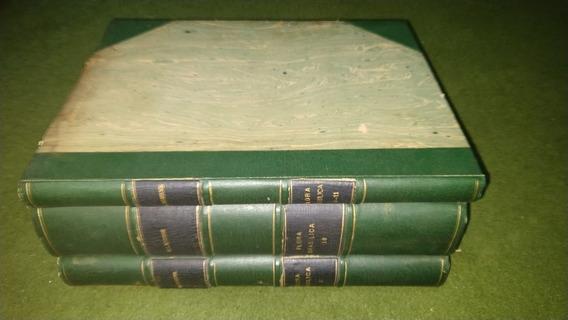 Flora Brasilica 3 Volumes