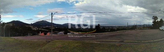 Terreno Em Vila Nova - Lp970