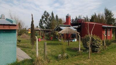 Turismo Rural Domselaar Quintas Y Cabañas Spa Cabalgatas