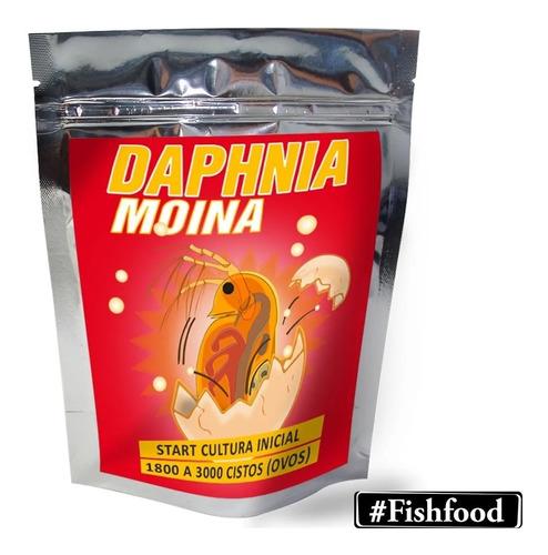 Start Inicial Daphnias Moina - F.grátis - 1800 A 3000 Ovos