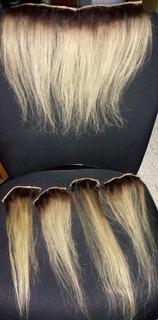 Color de pelo rubio arena