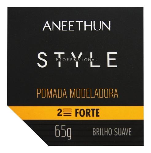 Imagem 1 de 1 de Aneethun Pomada Modeladora Style Brilho Suave 65g Fixação Fo