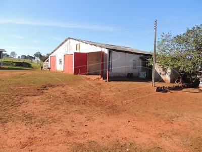 Fazenda Para Venda : Ref:020456.01 - 020456.01