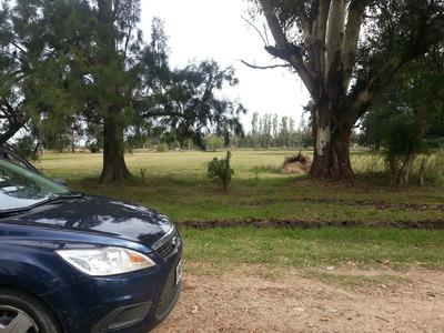 Lote - Terreno Sobre Autovía Ruta 2 Km 57 - Con Escritura