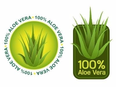 02 Unidades Suco Aloe Vera Gel Babosa Natural