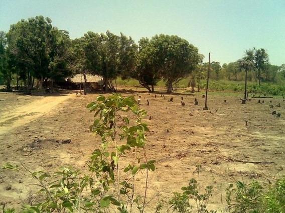 Fazenda Rural, Ponte Alta Do Tocantins - To - 52