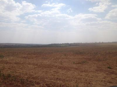 Fazenda - 1.300 Hectares - Prata (mg) - 704