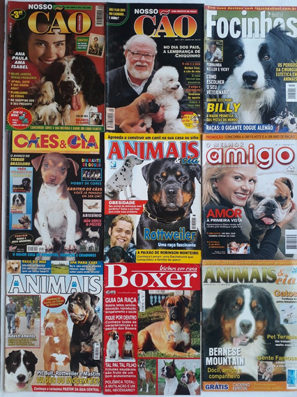 Cães E Cia Focinhos Esportes E Adestramento 18 Revista