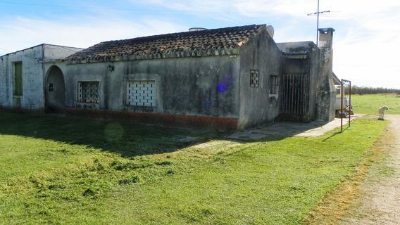 Venta Chacra Melilla 2 Hectáreas Casa Galpón