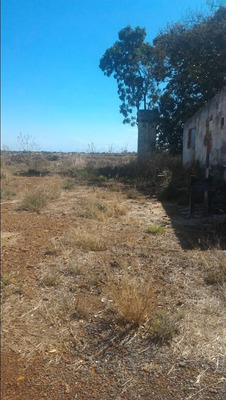 Terreno Em Parque São Judas Tadeu, Luziânia/go De 0m² À Venda Por R$ 100.000,00 - Te237165