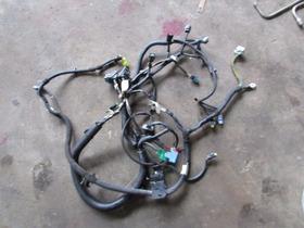 Chicote Do Motor C4 Pallas 2.0 16v Flex 2011