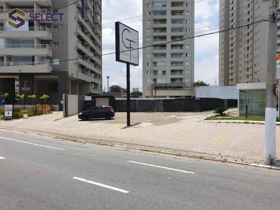 Área Para Estacionamento - 255 M² - - Jardim Do Mar - São Bernardo Do Campo/sp - Te0023