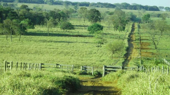 Fazenda Para Venda Em Brasilândia, Centro - 1096