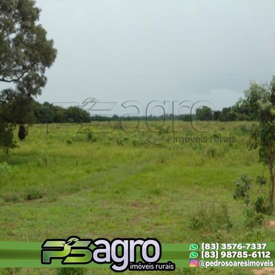 Fazenda À Venda, 88.000 Hectares Por R$ 132.000.000 - Centro - Poconé/mt - Fa0056