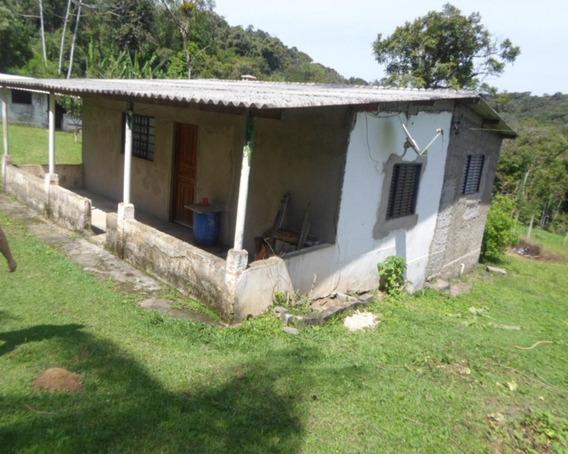 Chacara - 04210 - 33229021