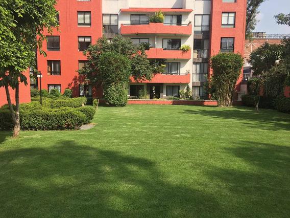 Departamento De 3 Recamaras Planta Baja, Amplio Jardin
