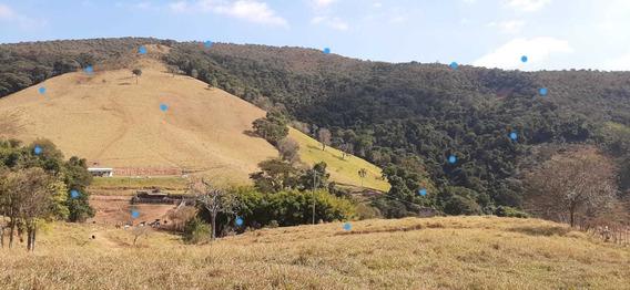 Sítio No Sul De Minas , Cidade De Baependi , Com 33 Hectares, Casa , 03 Nascentes, Cachoeira , Mata , Vista Maravilhosa. - 976