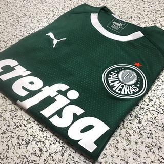 Camisa Do Palmeiras (pode Personalizar)