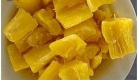 Mandioca Aipim Amarela Manteiga Sem Fiapo, 25 Mudas (ramas)