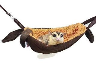 Venta Caliente 1 Unids Cuna Sugar Glider Hamster Ardilla Chi