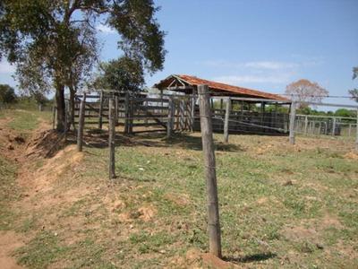 Fazenda A Venda Em Rio Negro -ms (pecuária) - 943