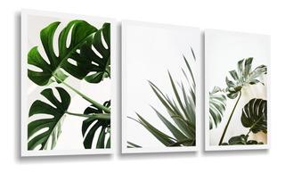 Quadros Decorativos Folhagem Costela De Adão Folhas Verdes Para Sala Quarto Recepção Escritório Decoração Criativa