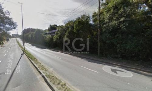 Terreno - Lomba Do Pinheiro - Ref: 368349 - V-pj2553