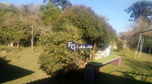 Imagem 1 de 15 de Chácara Com 3 Dormitórios À Venda, 18000 M² Por R$ 1.199.000,00 - Colônia Murici - São José Dos Pinhais/pr - Ch0046