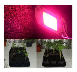 Led Chip 50w Alta Potencia Para Cultivo (220v) Full Spectrum