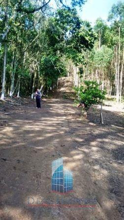 Sítio Venda Permuta Sarapuí Das Torres Piedade Sp - 04512-1