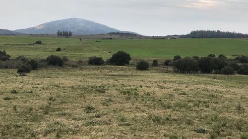 Hermoso Campo De 123 Has. Vistas A Las Sierras (ref. 2117)