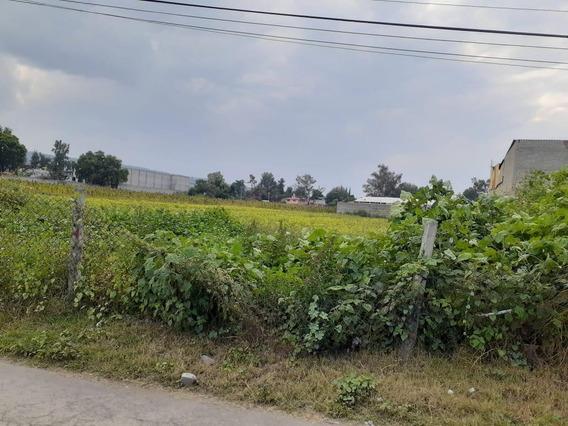 Terreno - San Juan
