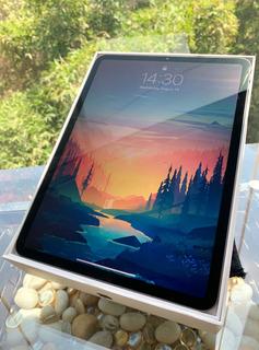 Apple iPad Pro 11 256 Gb Con Applecare+ 19mil De Contado