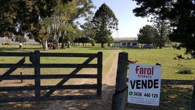 Quintas Venta Victoria