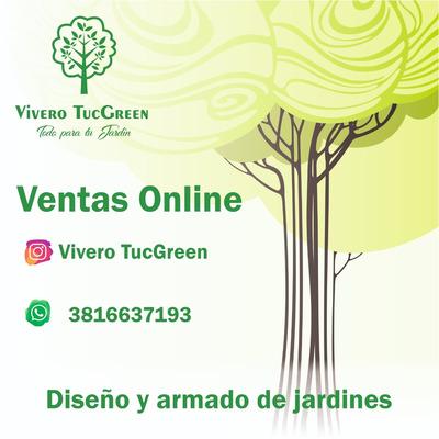Vivero Tucgreen Paisajismo Plantas Arboles