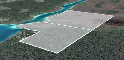 Terreno De Magnífica Ubicación En La Laguna De Bacalar