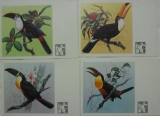 Cartões Postais Série Fauna Brasileira Tucanos Frete Grátis