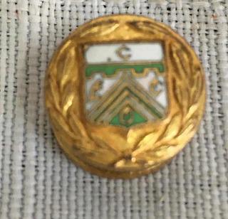 Gemelo Esmaltado Escudo Ferro Carril Oeste - Fútbol