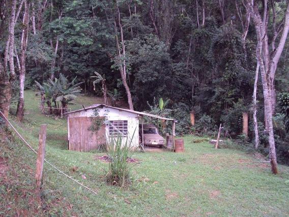 Chácara Em Pic Nic Center, Mairiporã/sp De 40m² 2 Quartos À Venda Por R$ 180.000,00 - Ch476036